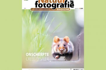 Natuurfotografie Magazine 2019-42 Cover