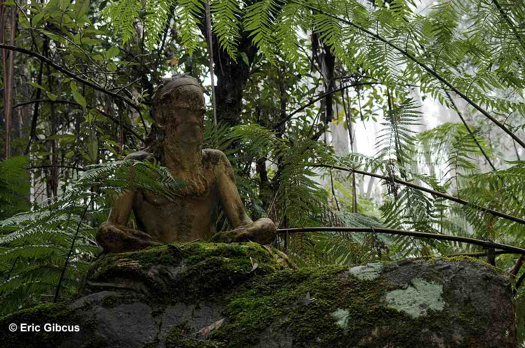 Beeld in William Ricketts Sanctuary