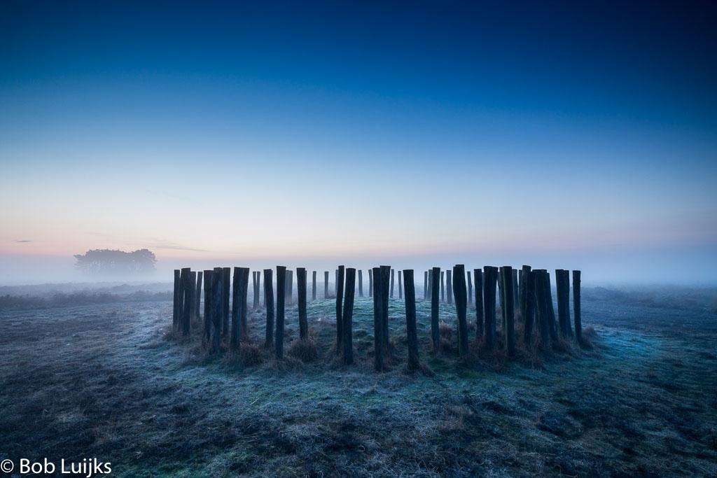 Gebieden fotograferen Natuurfotografie.nl:Regte Heide