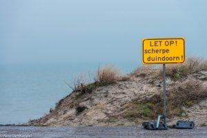 Waarschuwingsbord voor scherpe duindoorns na werkzaamheden in de zeereep. - Fotograaf: Nico van Kappel
