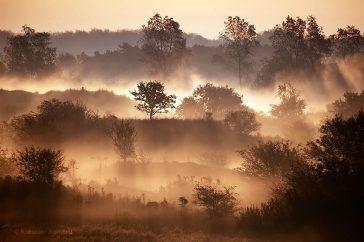 duinen in de mist met zonsopkomst