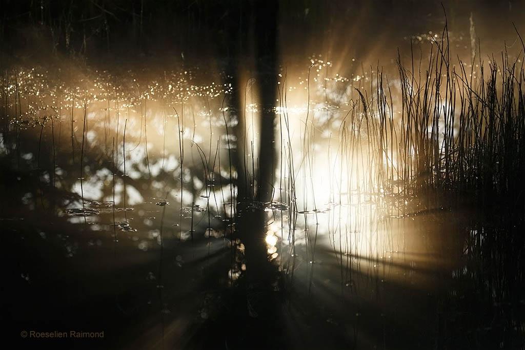 licht reflectie