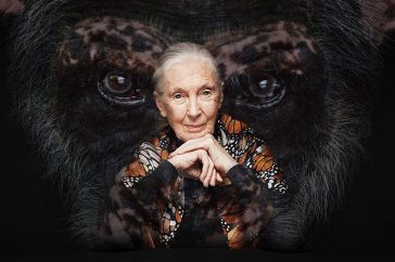Jane Goodall Winactie
