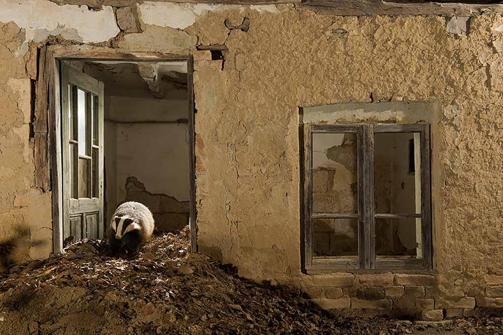 Das in een verlaten huis te Bulgarije.