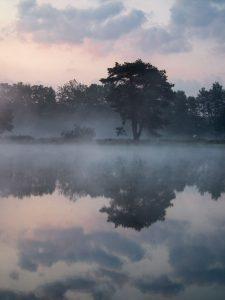 Spiegeling in een ven, 's ochtends vroeg. - Fotograaf: Ron Poot