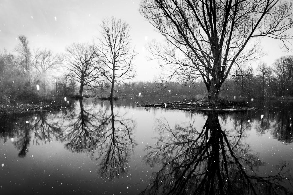 Kruibeekse polder in de sneeuw