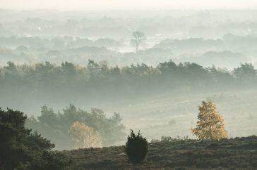 Lemelerberg: panorama Archemerberg