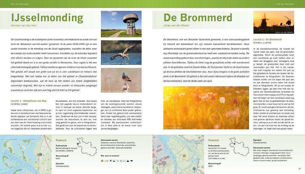 Boekpagina ijsselmonding-brommerd (Medium)