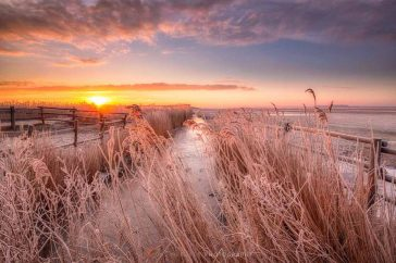 Landschap winter Lauwersmeer