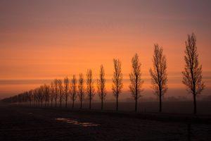 In de winter maak je kans op de mooiste zonsopkomsten.  - Fotograaf: Ron Poot