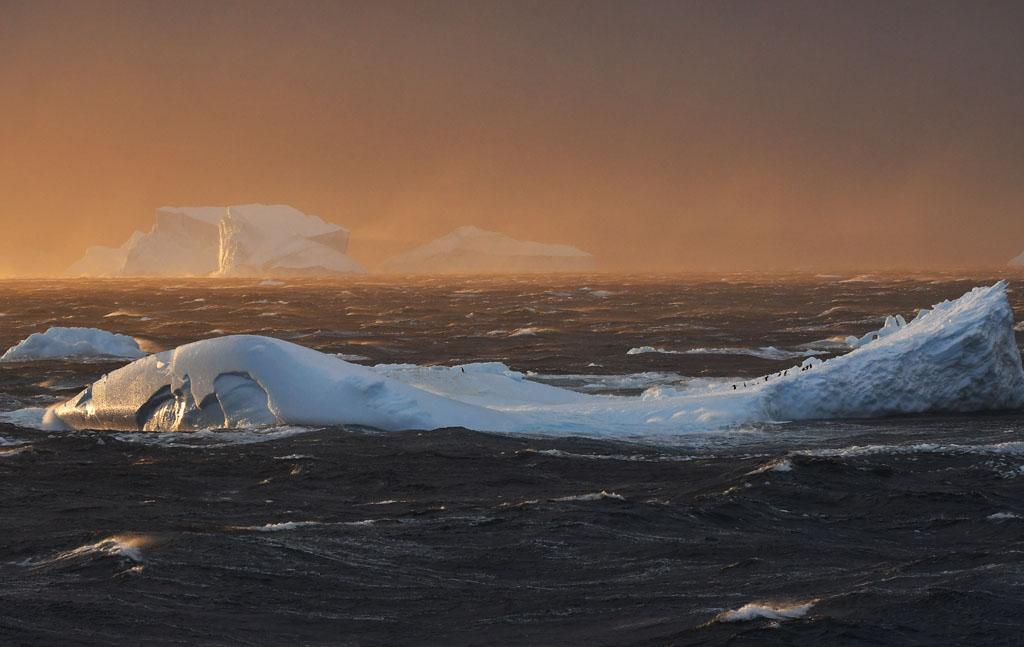 Een ijsschots in de storm met daarop pinguïns.