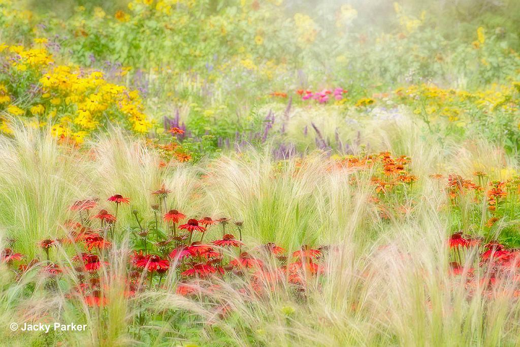 Winnaar IGPOFY 'Beautiful gardens' editie 13