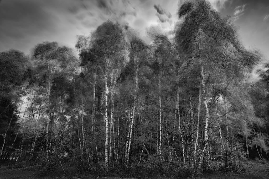 Tutorial zwartwit fotografie: Deel 1 Introductie