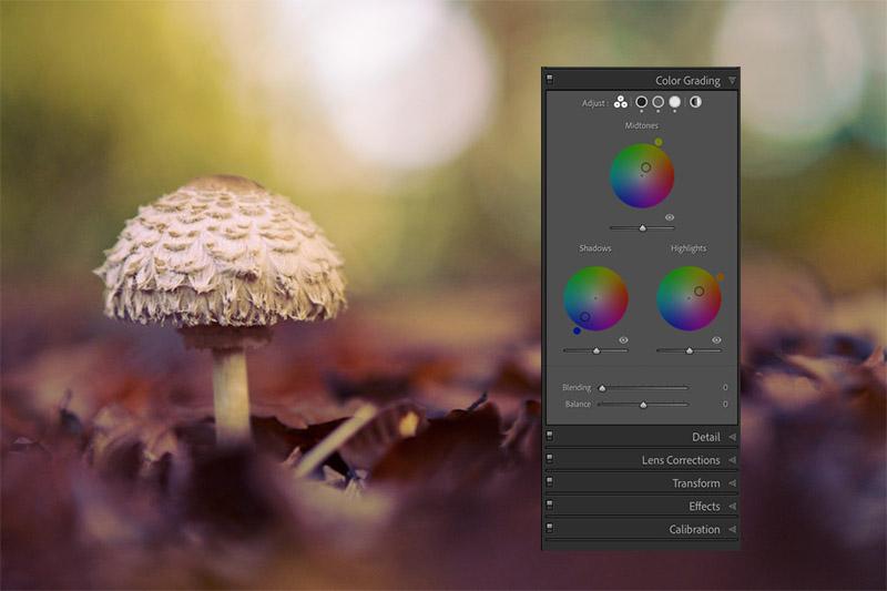 Nieuwe functie in Lightroom Classic: Kleurverloop (Color Grading)