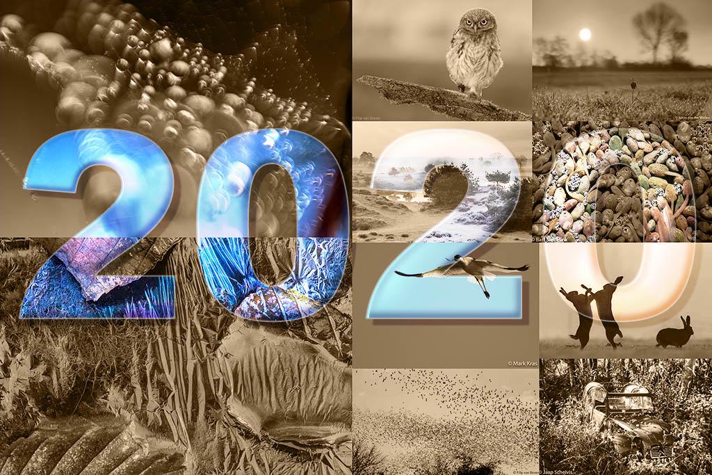 2020_jaaroverzicht