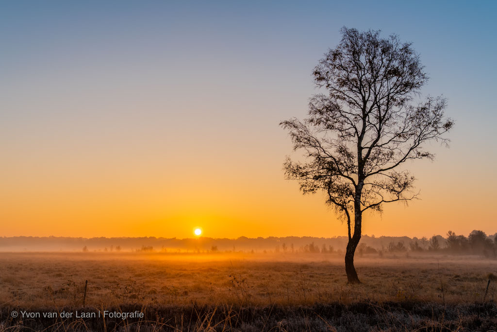 Natuurfotografie agenda december 2020 – januari 2021
