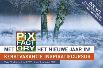 Pixfactory challenge 2020_doe_mee_10x15