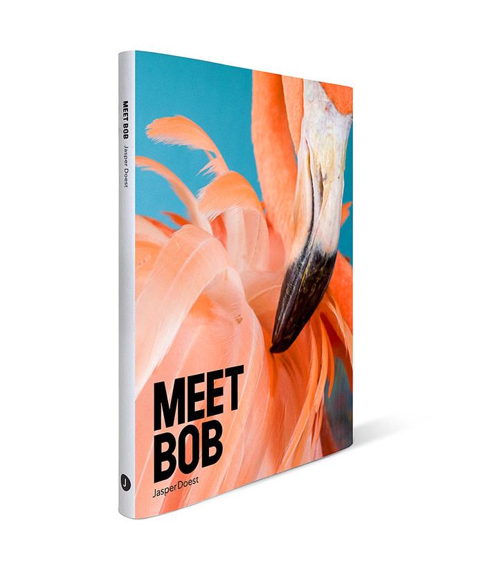 Boek Meet Bob