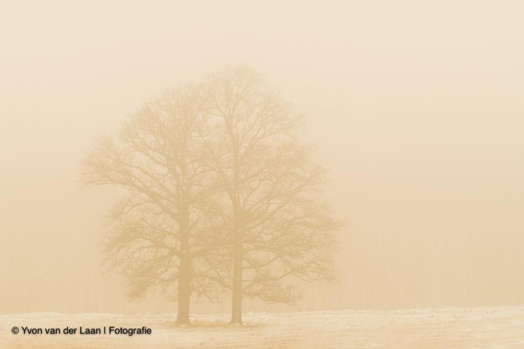 Natuurfotografiekalender februari