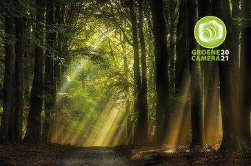 Fotowedstrijd: de Groene Camera 2021