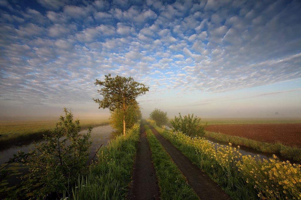 Eervolle vermelding in de categorie Landschappen 1 van de Groene Camera 2021
