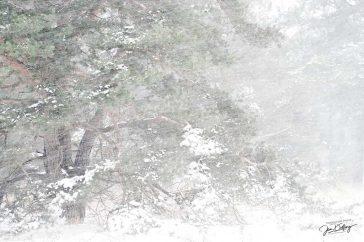 Sneeuwstorm.
