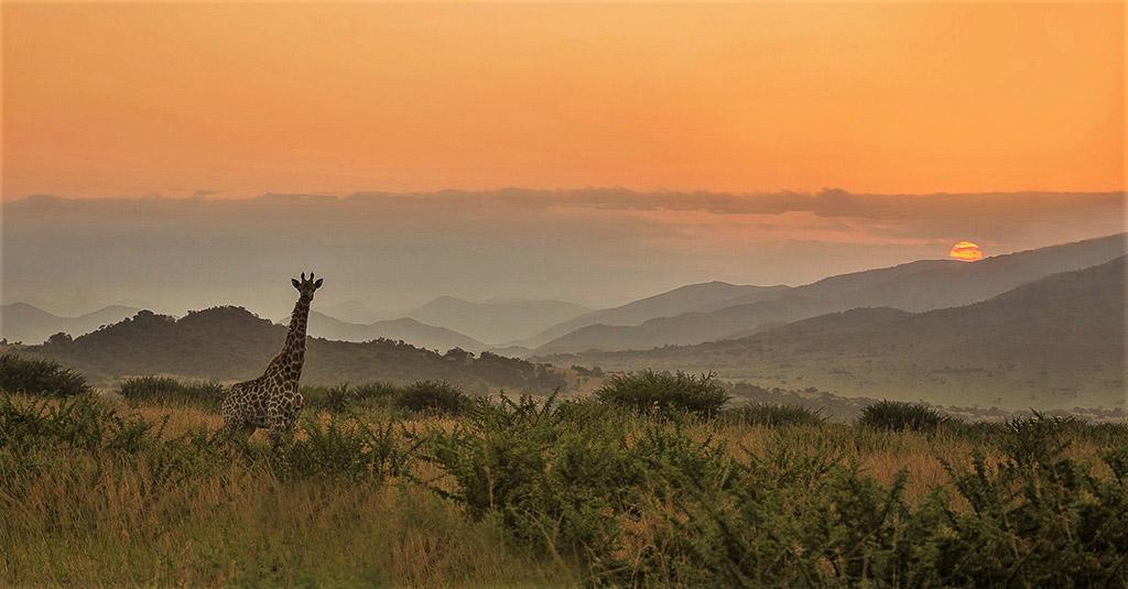 Zonsopkomst Zuid-Afrika