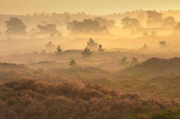 Landschap Drenthe