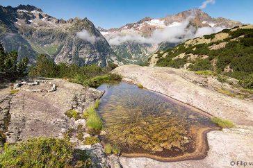 Het leefgebied van de azuurglazenmaker in Zwitserland