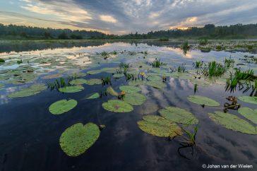 Landschapsfotografie de Wieden