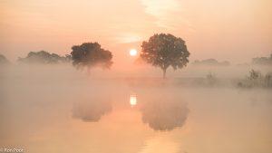Ochtendnevel ontstaat vaak het eerst boven water, waar het vochtig en koel is. - Fotograaf: Ron Poot