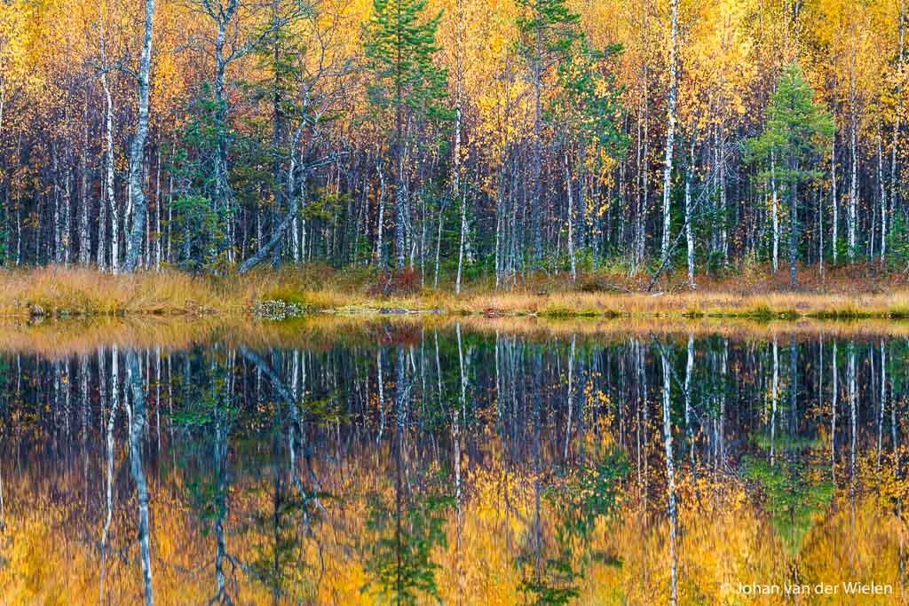 abstractie door reflectie